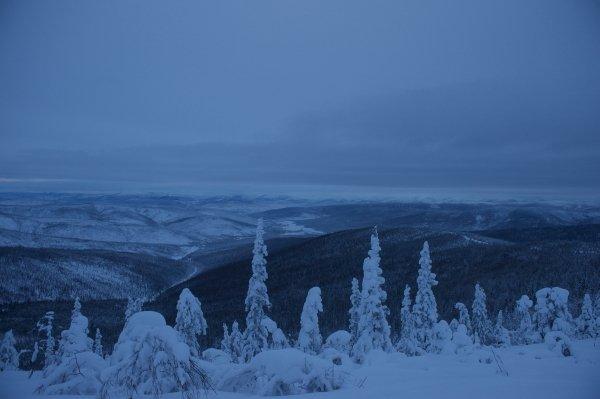 Vintern 2015 blir det skidtur i Kanada Foto: Martin Hartley
