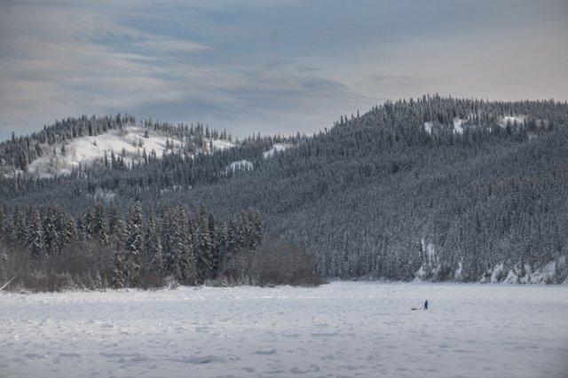 På väg genom landskapet längs Yukon River Foto: Martin Hartley