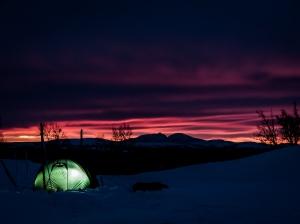 Tält i solnedgång. Foto: David Erixon