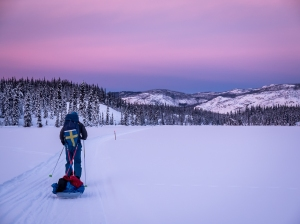 Blå timmen under Yukon Arctic Ultra Foto: David Erixon