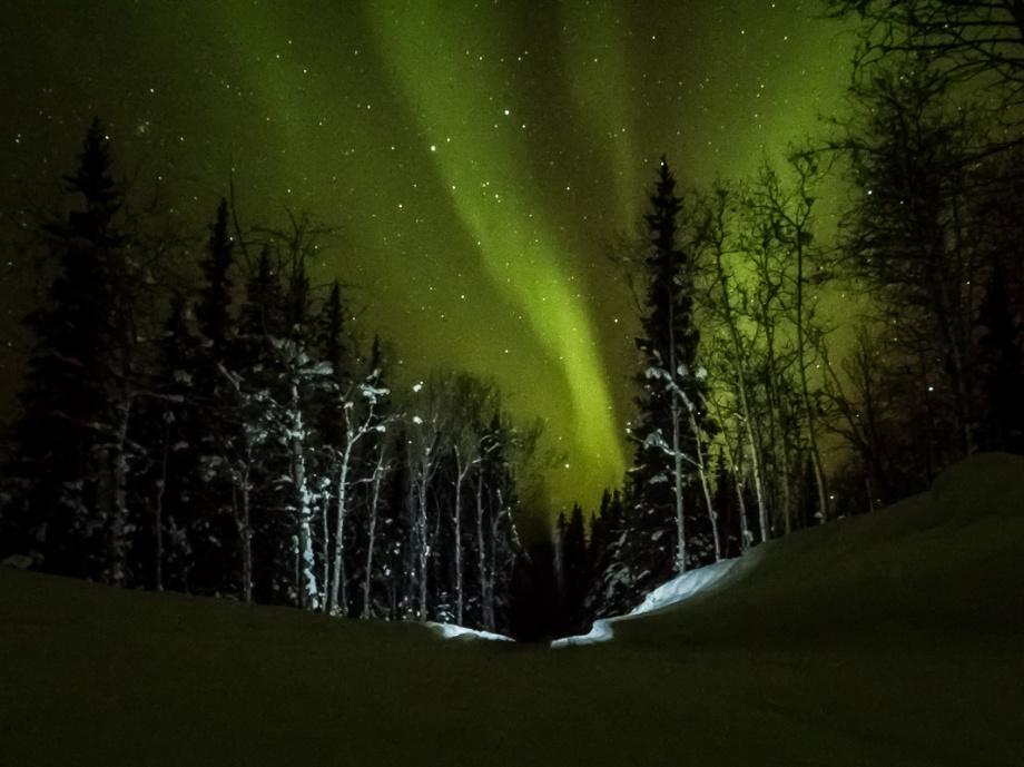 Att få skida fram i norrsken är verkligen De Luxe. Foto: David Erixon