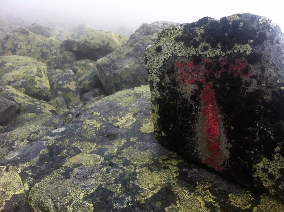 Några röda Tn bland blockterräng och dimma.
