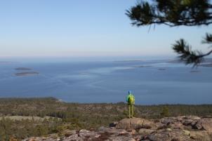 Från Slåttdalsbergets topp i Skuleskogens nationalpark Foto: Linnea Nilsson Waara