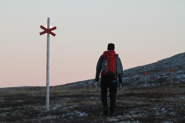 Kvällsvandring i Sonfjällets nationalpark Foto: Linnea Nilson Waara
