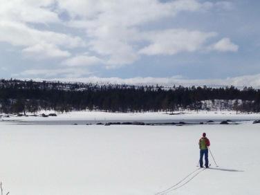Vårvinter i Töfsingdalens nationalpark Foto: Linnea Nilsson Waara