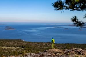 Skuleskogen Foto: Linnea Nilsson Waara
