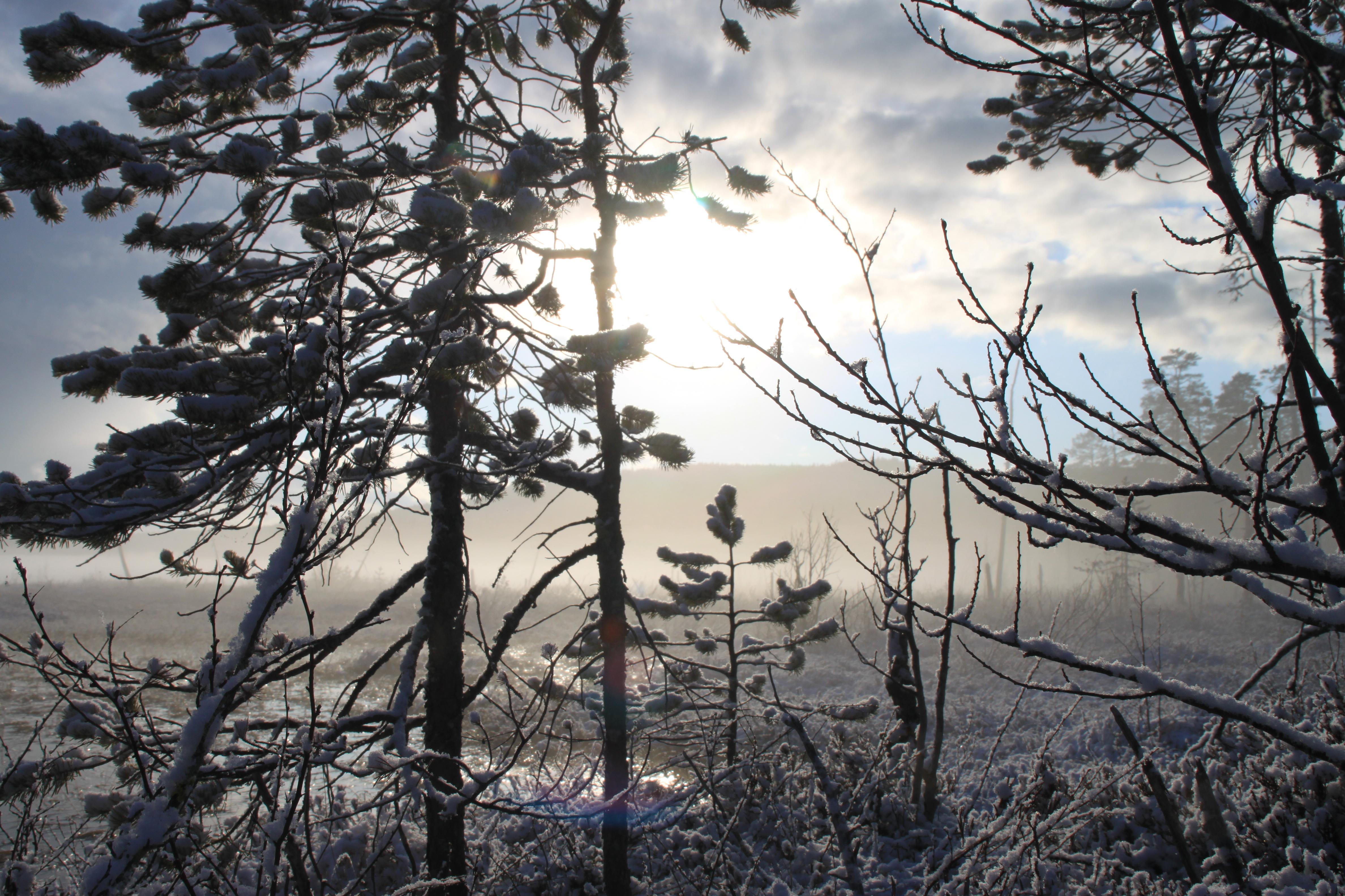 Björnlandets Nationalpark