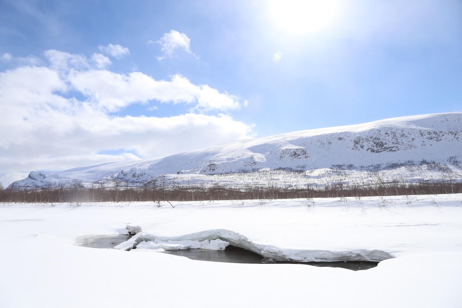 Vintertur i Sarek: Skogslandskap och glada vädernyheter